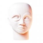 Комбинированный манекен-голова со съемными частями
